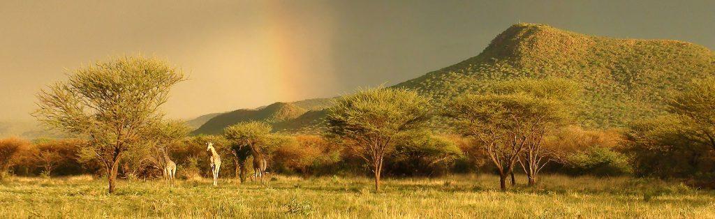 Okonjima Lodge, Africa