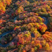 Irohazaka in Autumn